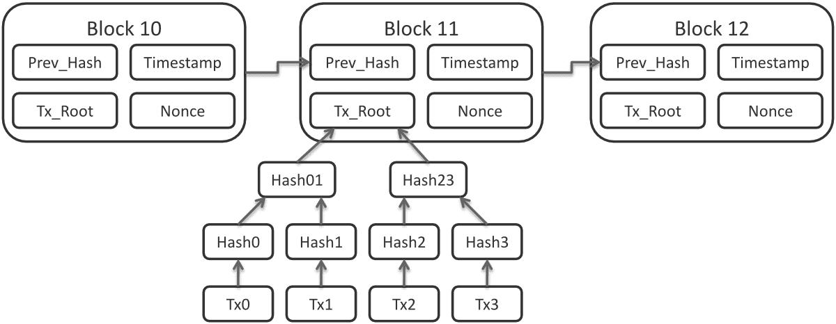 Contenido de bloques en Bitcoin